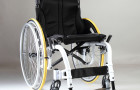 Wisdom From A Wheelchair: An FDR Resource Guide